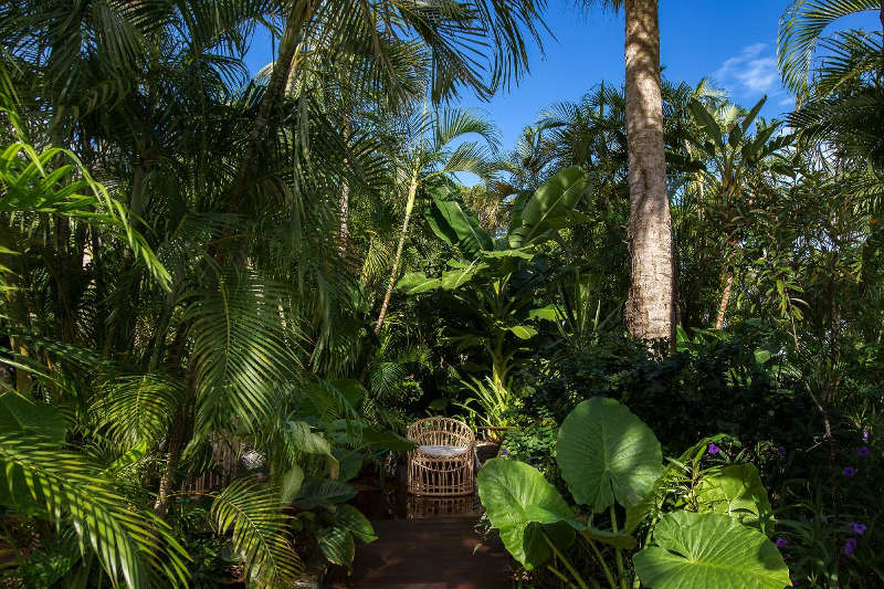 A colourful tropical getaway for Tropical getaways in december